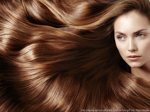 cabeloscompridos.jpg